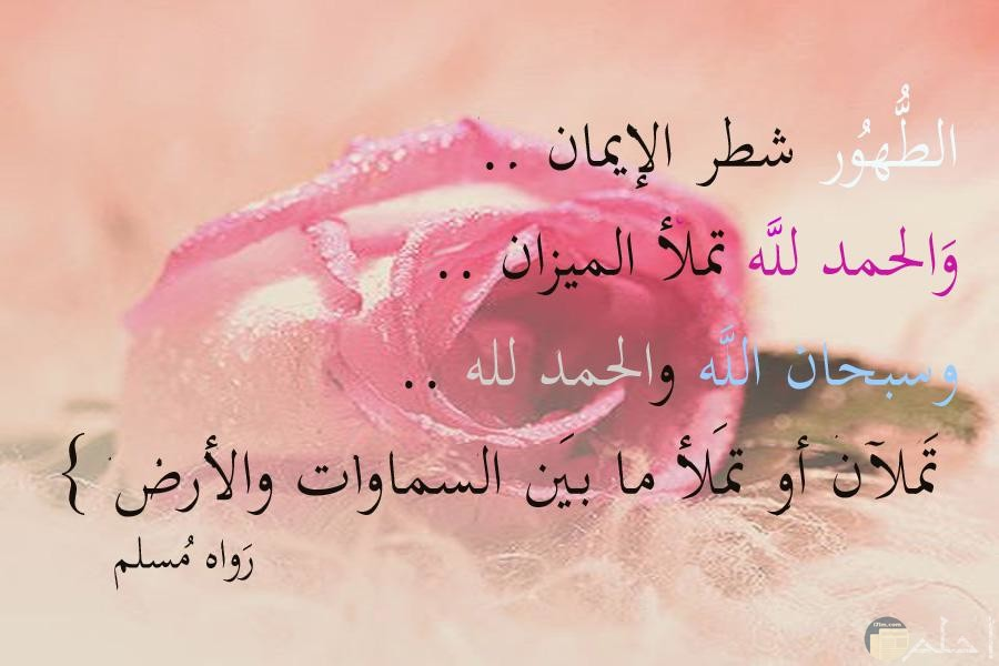 صورة اسلامية الطهور شطر الايمان والحمد لله تملأ الميزان