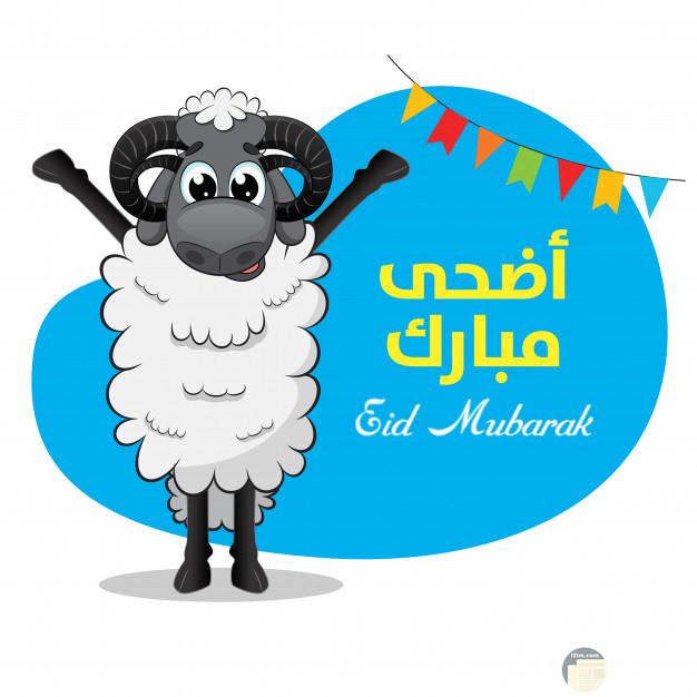 صورة خروف العيد