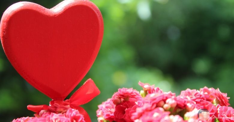 أجمل صور الحب والعشق والغرام