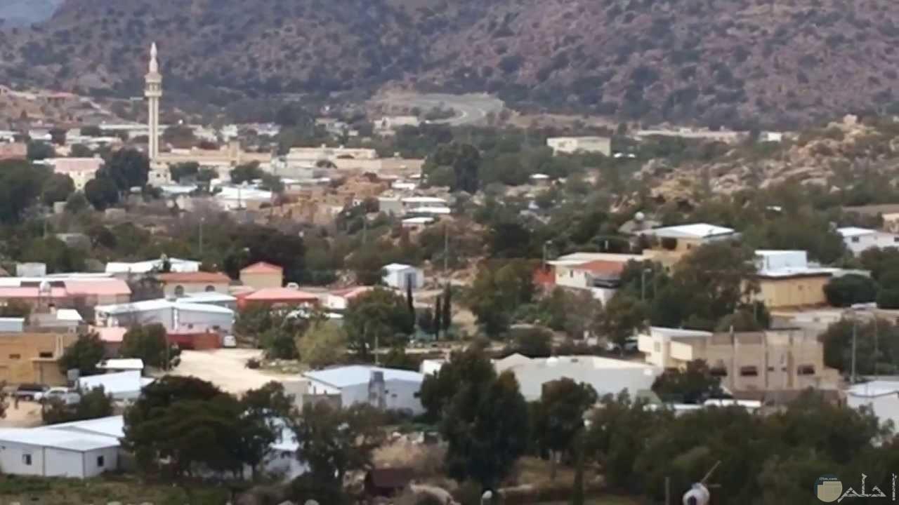 قرية الشفا بالطائف.