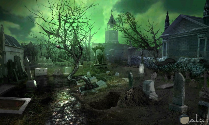 مقابر تخرج من بينها أشجار مرعبة