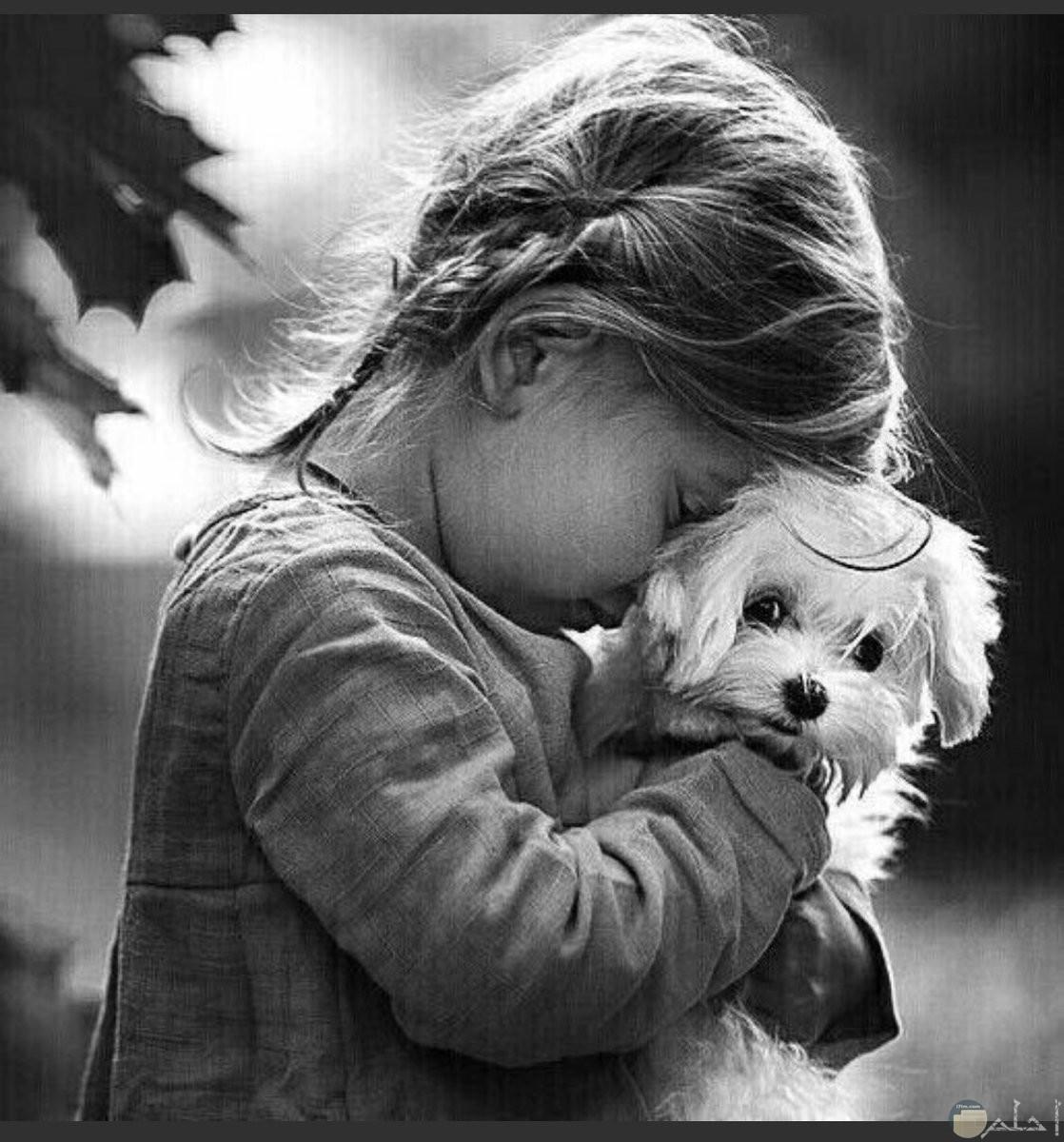 صفلة تحمل كلب صغير لولوه وتضع راسها علية بحزن