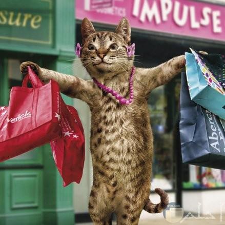 صورة مضحكة لقطة تحمل حقائب كثيرة بعد التسوق