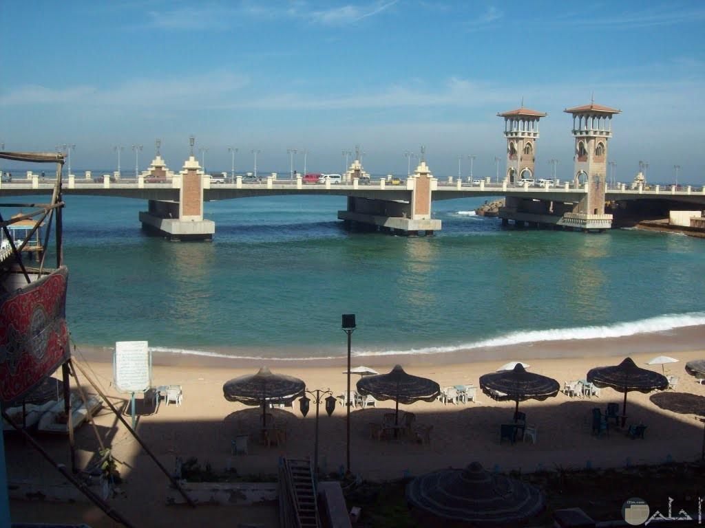 صورة مميزة لشاطئ ستانلى وظهور الكبري