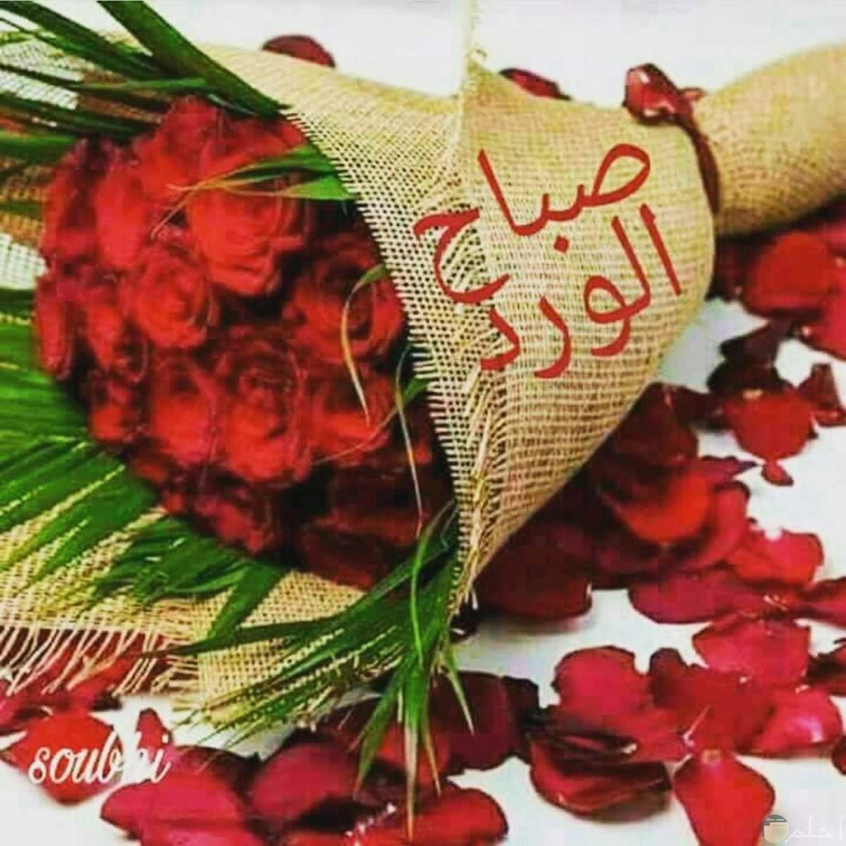صورة بها بوكية ورد احمر ومدون بعبارة صباح الورد
