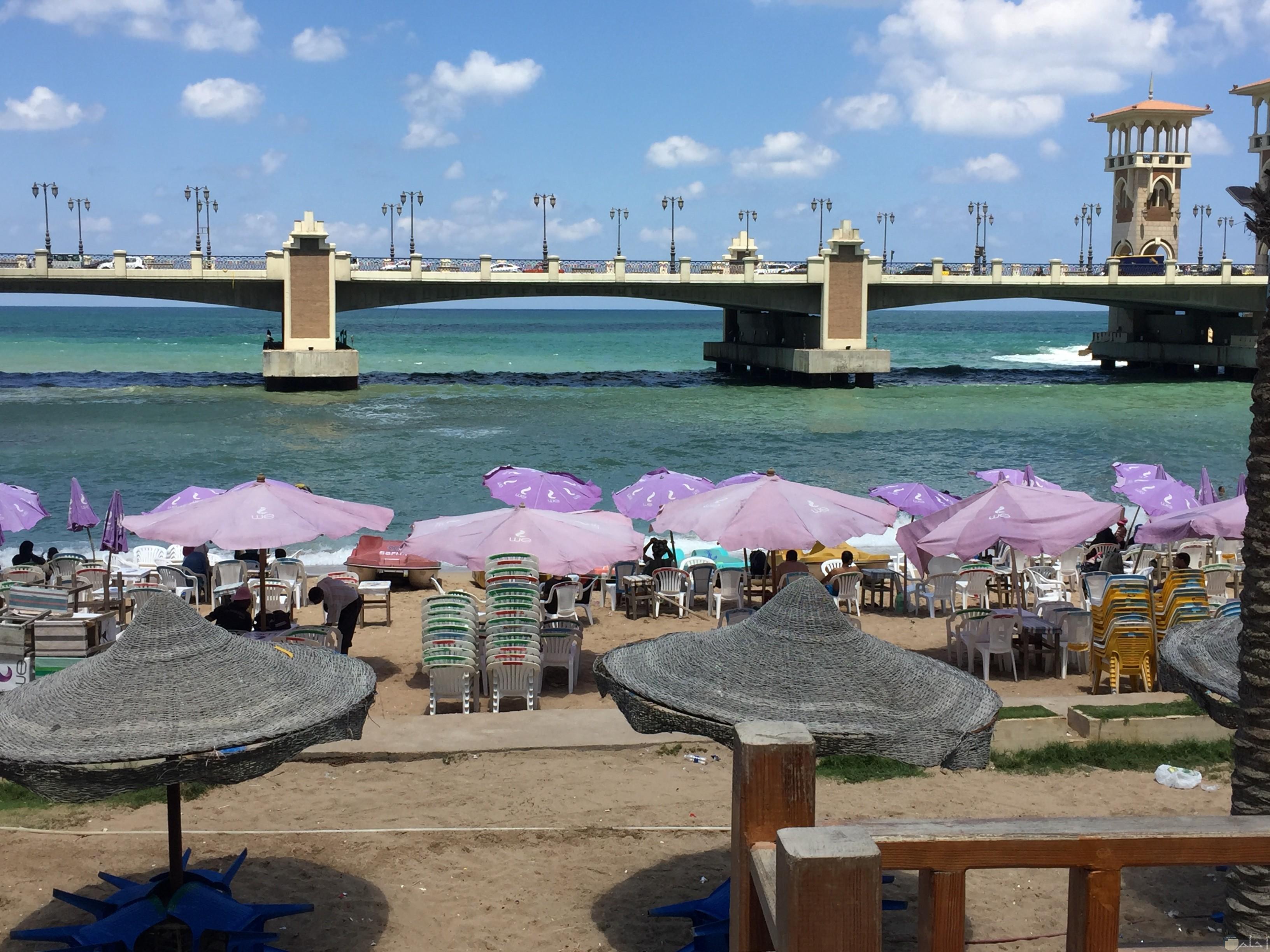 شواطئ استانلي وتواجد الزوار بها