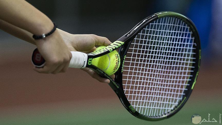 لعبة تنس مضرب وكرة