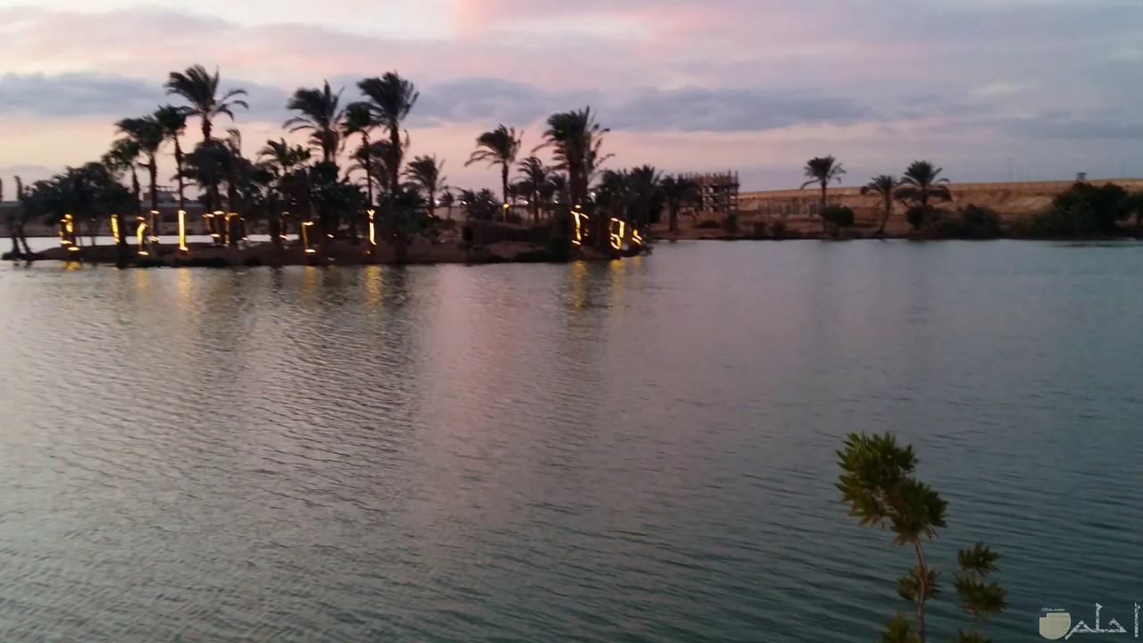 بحيرة الرياض