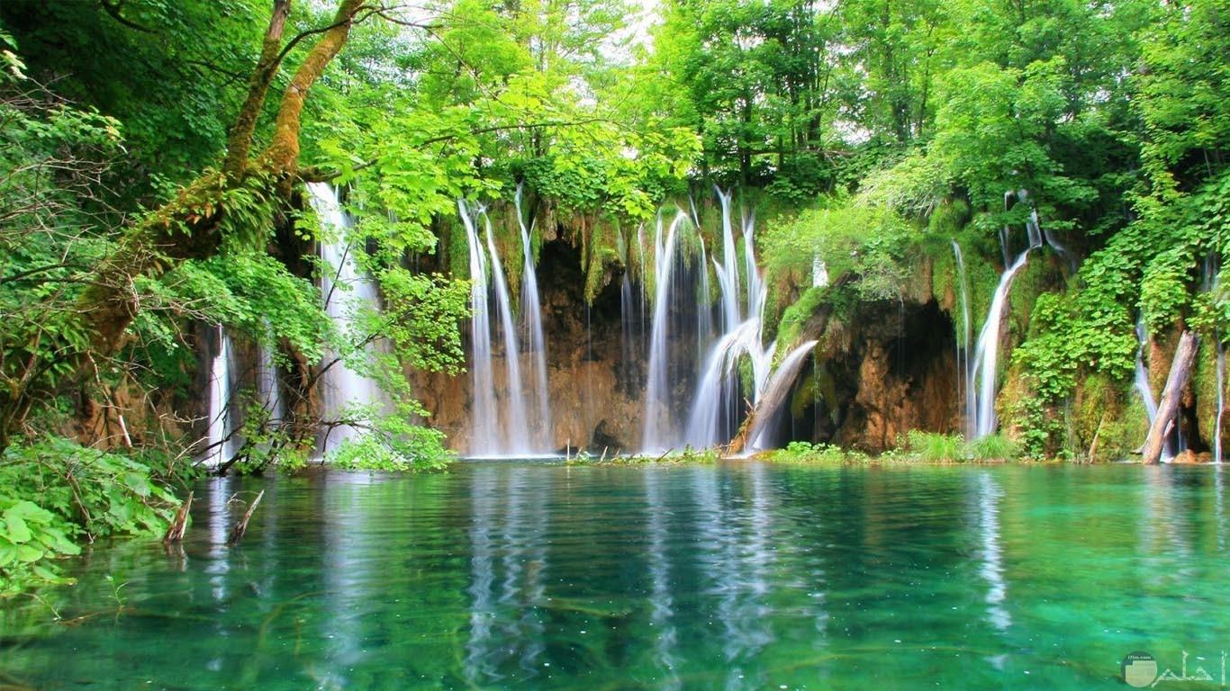 صورة تجمع الكثير من الشلالات التى تصب على بحيرة محاطة بالاشجار
