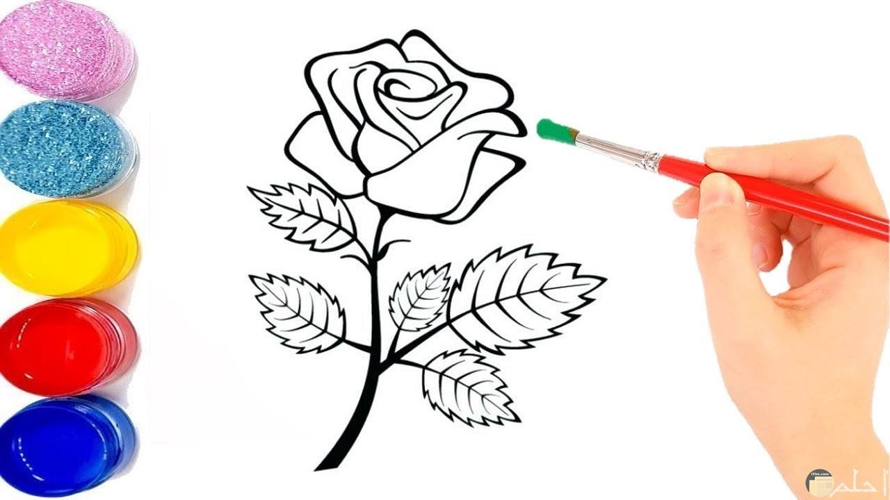 وردة جميلة مرسومة لمحبي صور الورود