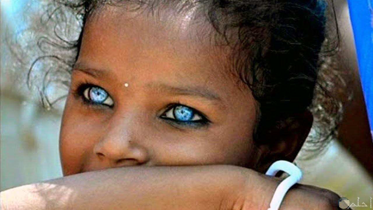 طفلة سمراء بعيون زرقاء جميلة.