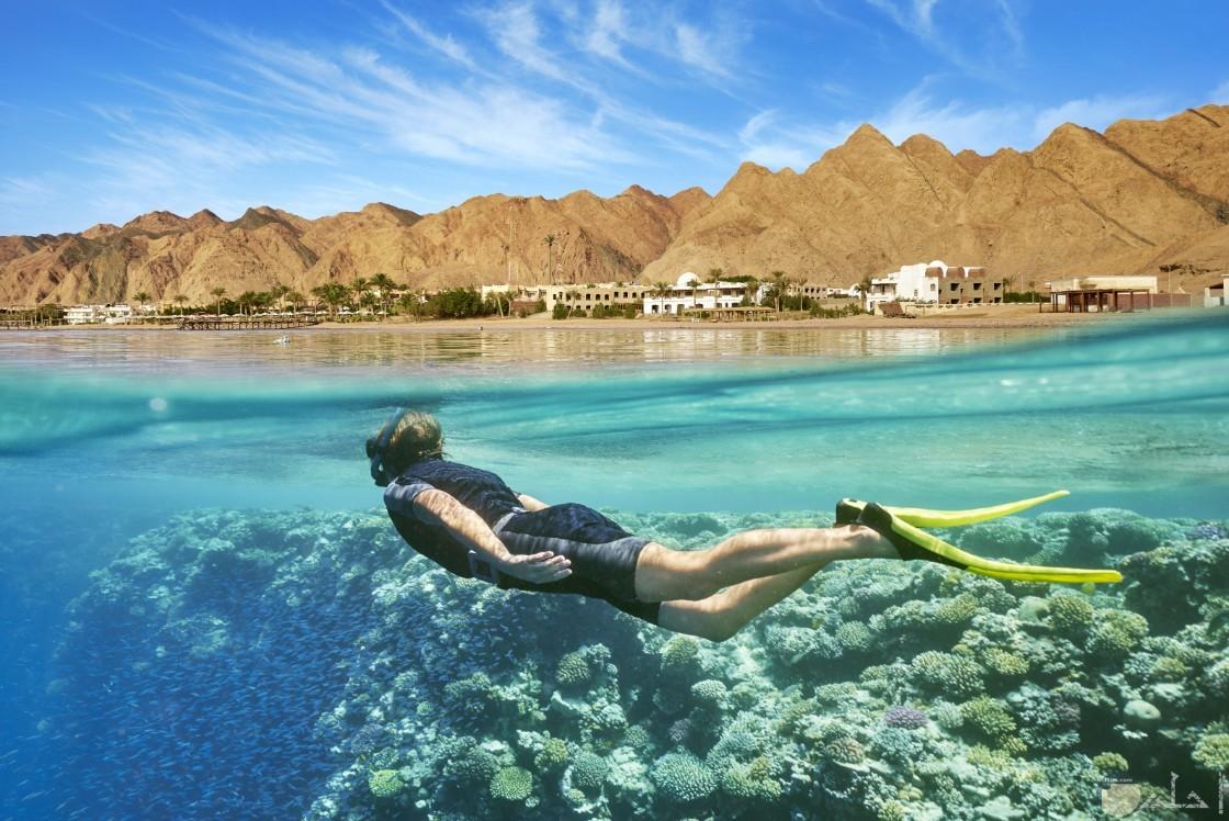 جزيرة فرسان – جازان -السياحة و الغطس
