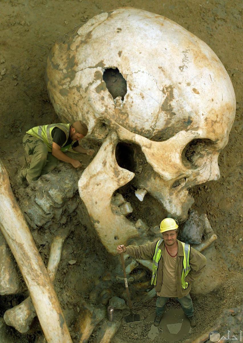 جمجمة عملاقة مرعبة و خيفة.