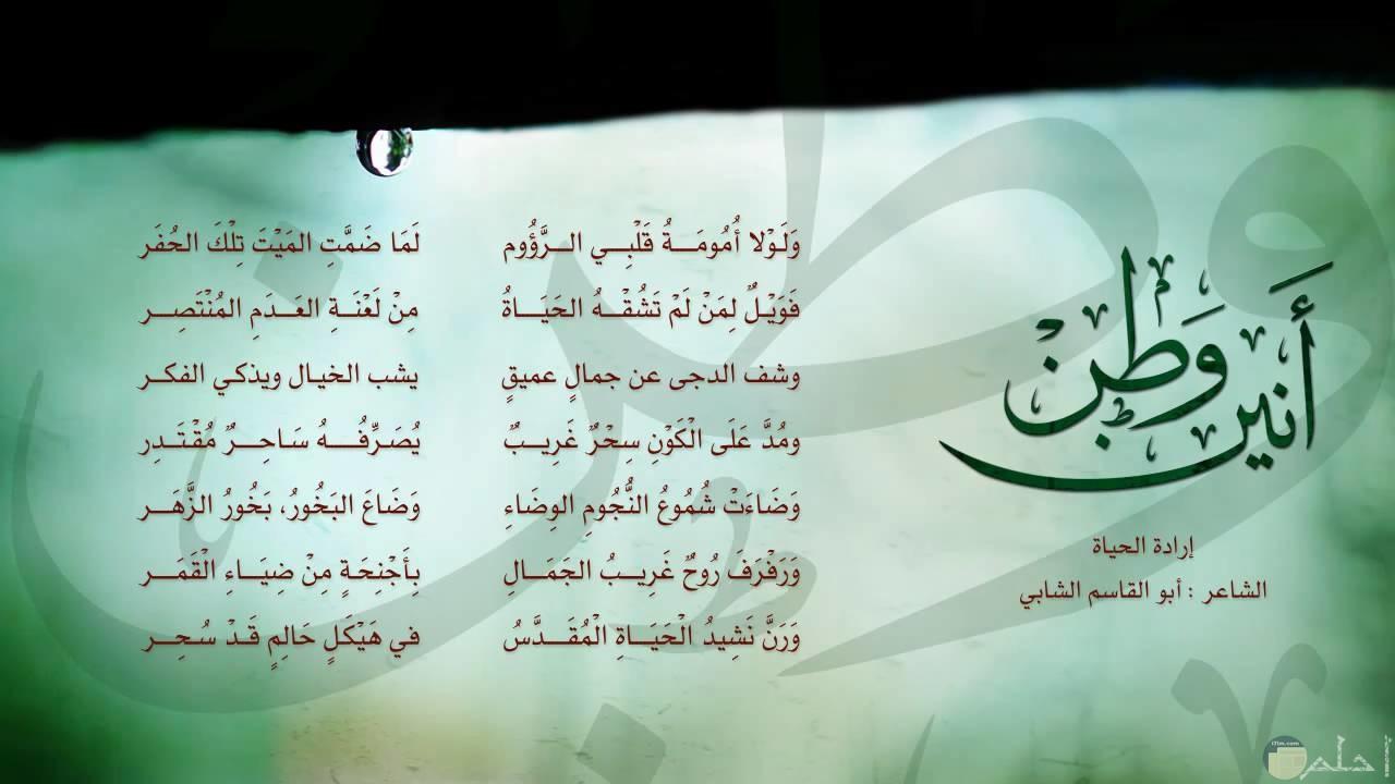 الشاعر أبو القاسم الشابي - شعر أنين وطن.