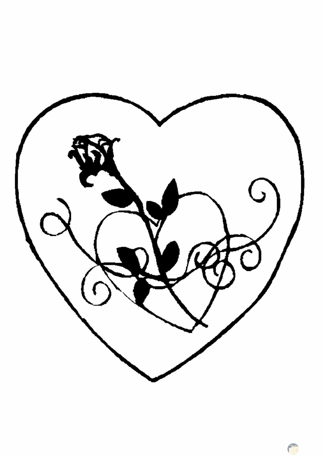 قلب جميل بداخله زهرة