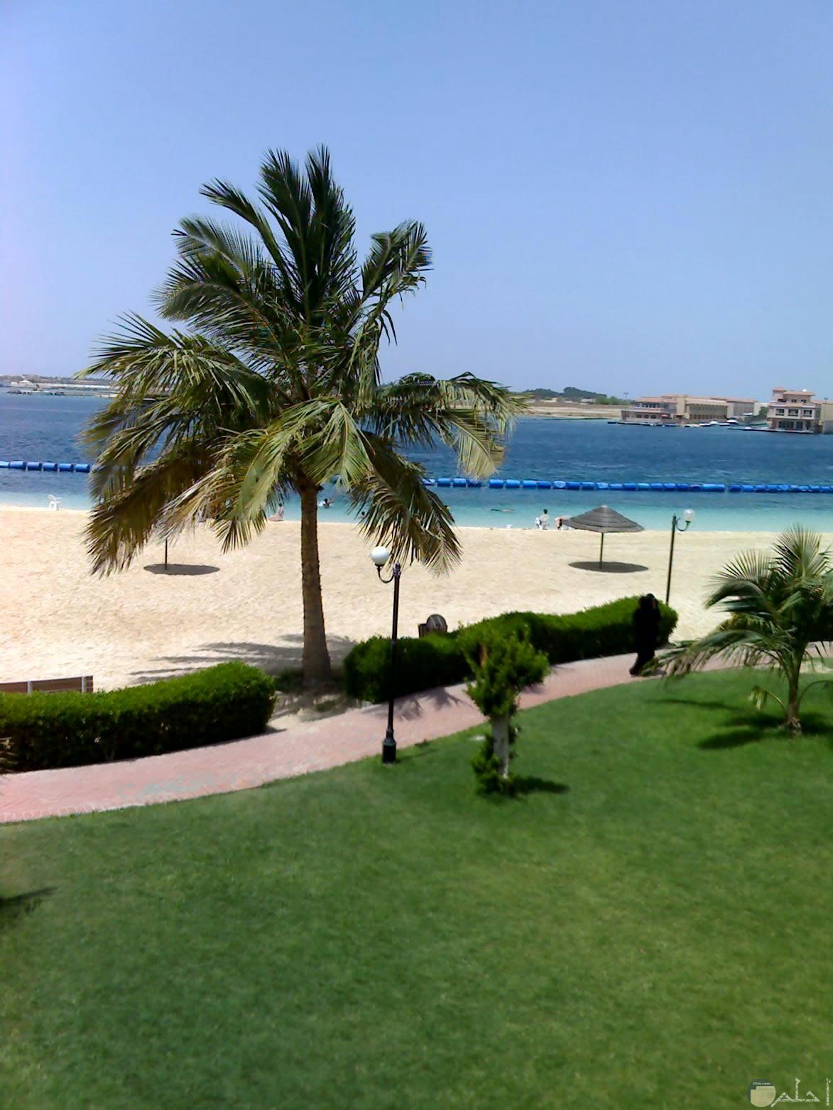 شاطئ شرم أبحر – على بعد 30 كيلو متر من مدينة جدة
