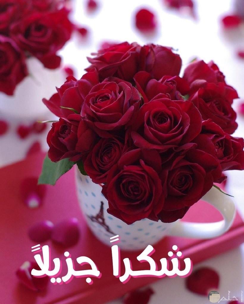 باقة زهور جميلة مكتوب عليها شكراً جزيلا