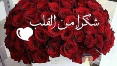 شكرا من القلب وزهور حمراء