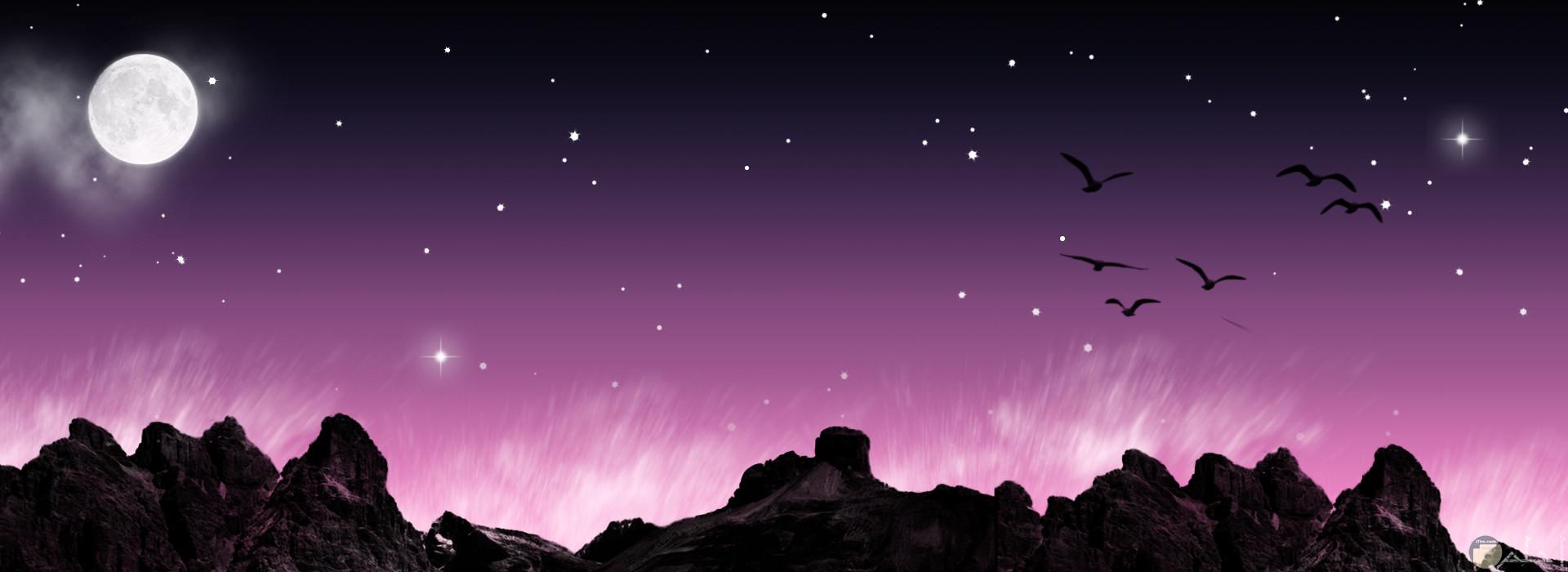 أجمل صور الطبيعة للسماء و الطيور باللون البنفسجي.