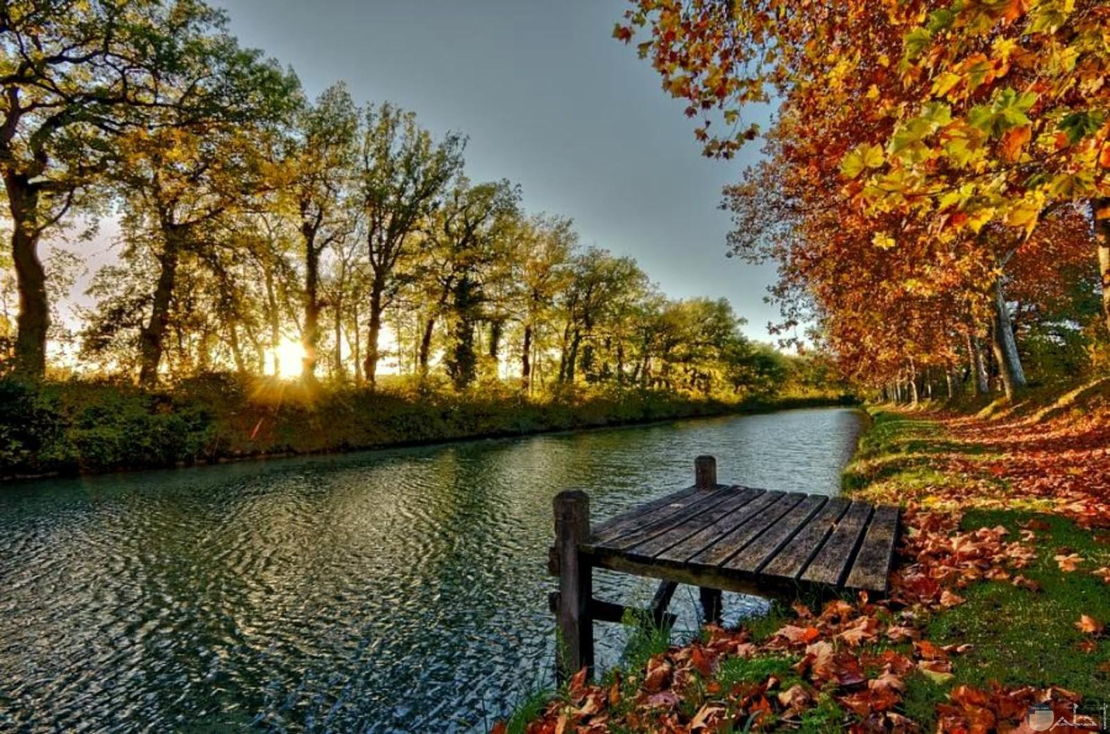 صورة نهر و الأشجار الطبيعية تحيط به من الجانبين.