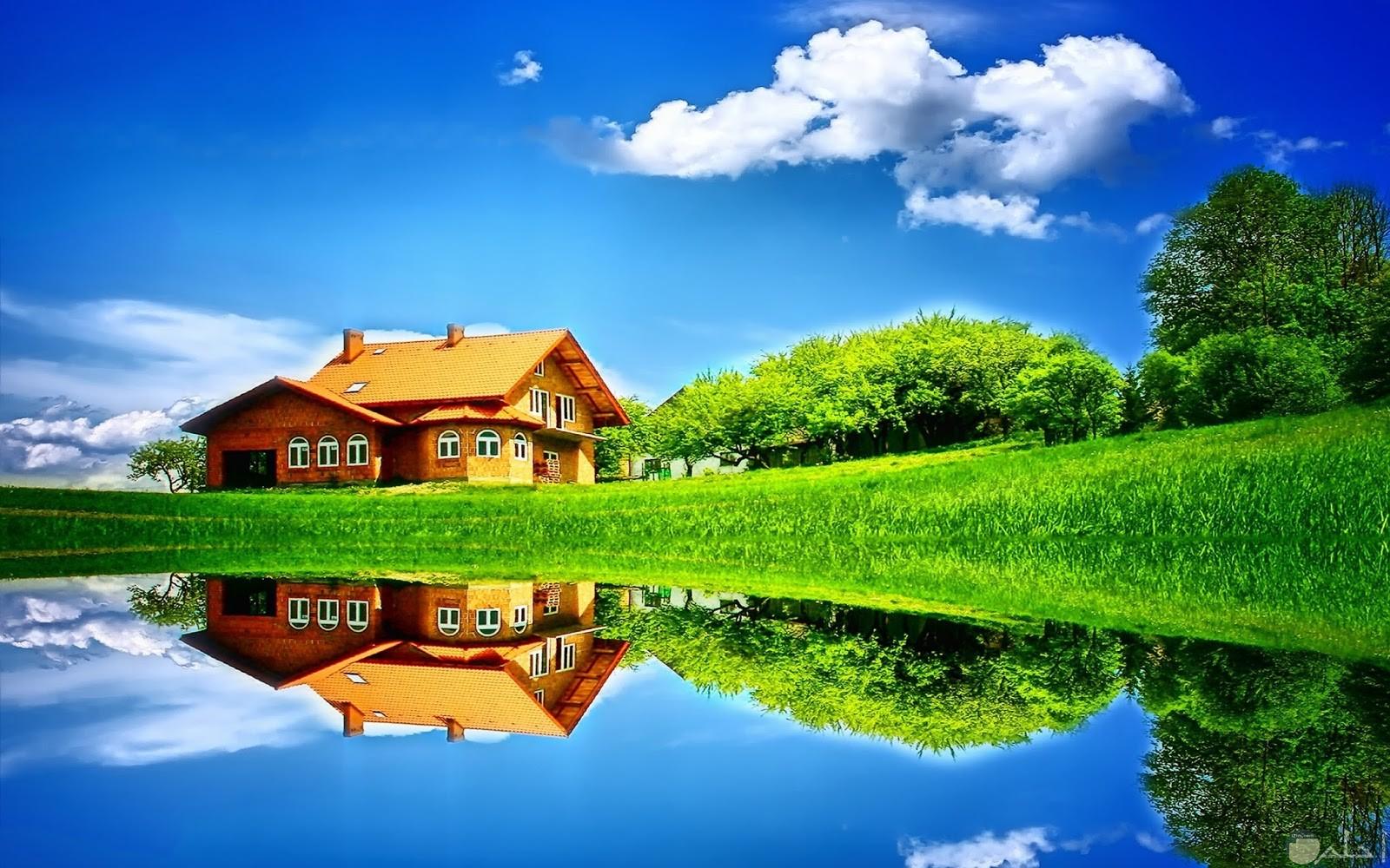 منزل بسيط وسط المرج الأخضر الكبير.
