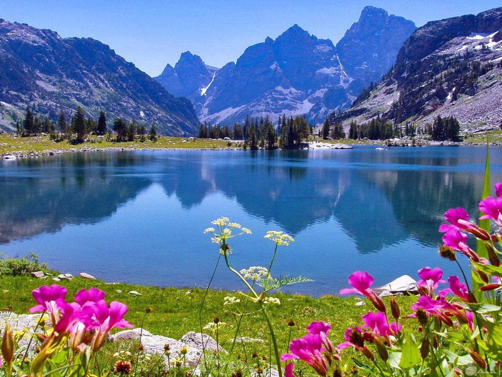 منظر طبيعي جميل للجبال و النهر و الخضرة.