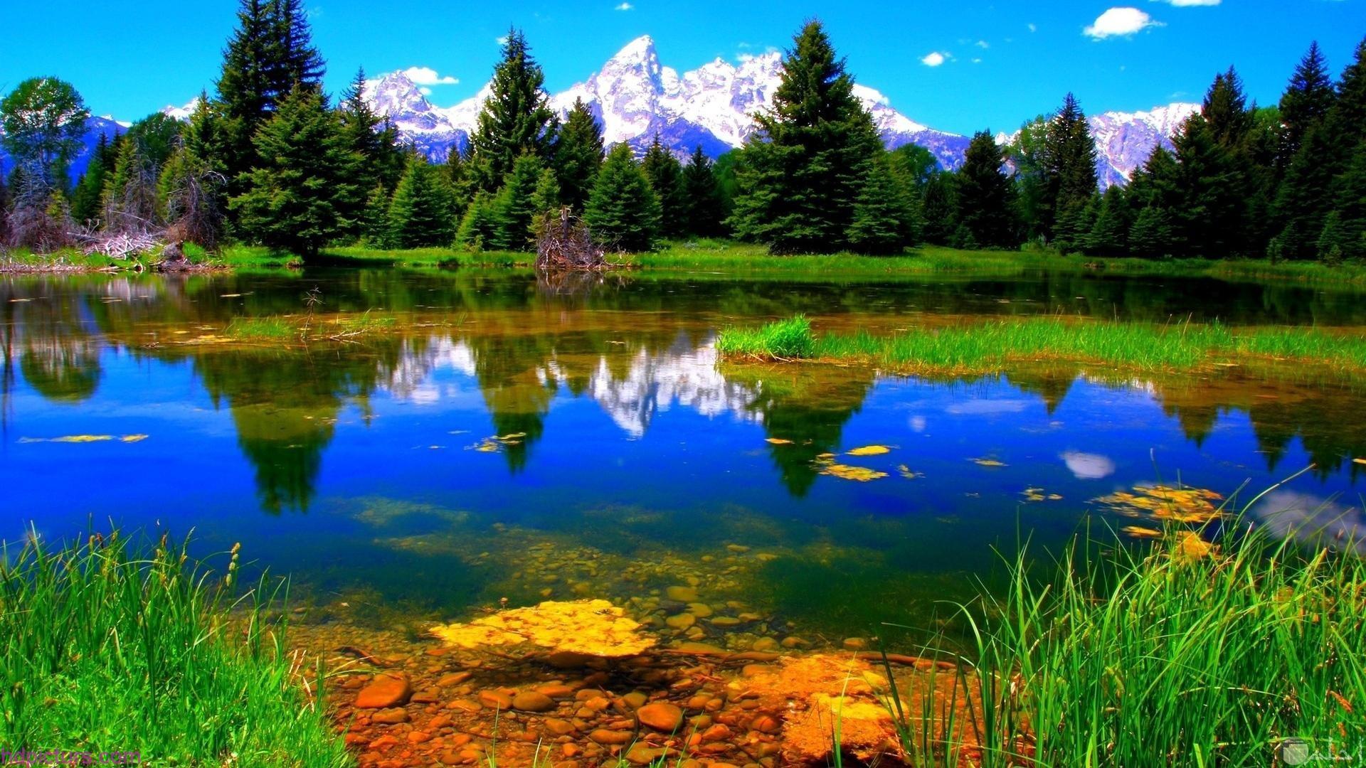 تنزيل صور طبيعة ساحرة وخلابة اجمل 10 خلفيات طبيعية