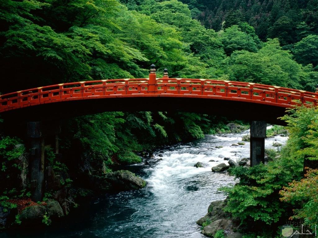 جسر فوق النهر و جمال الطبيعة.