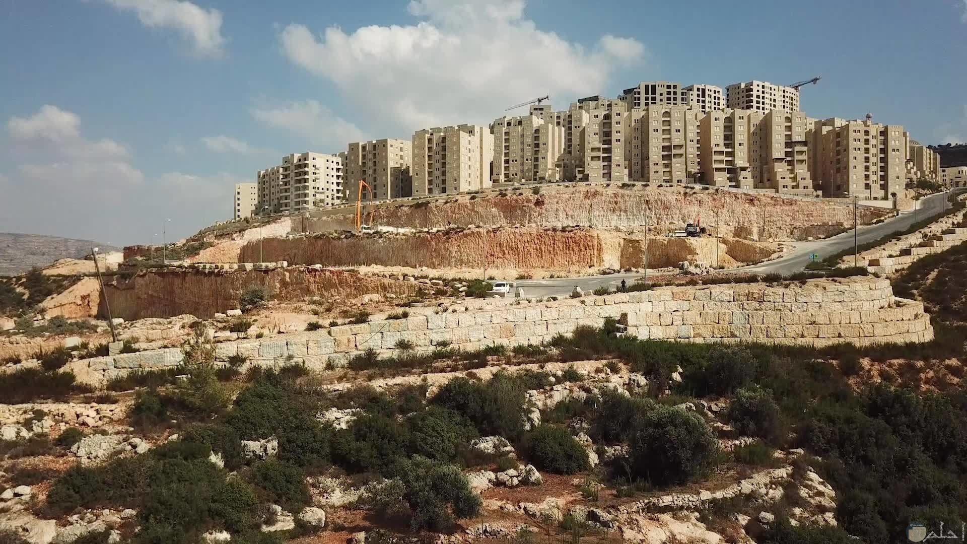 مدينة روابي الفليسطينية.