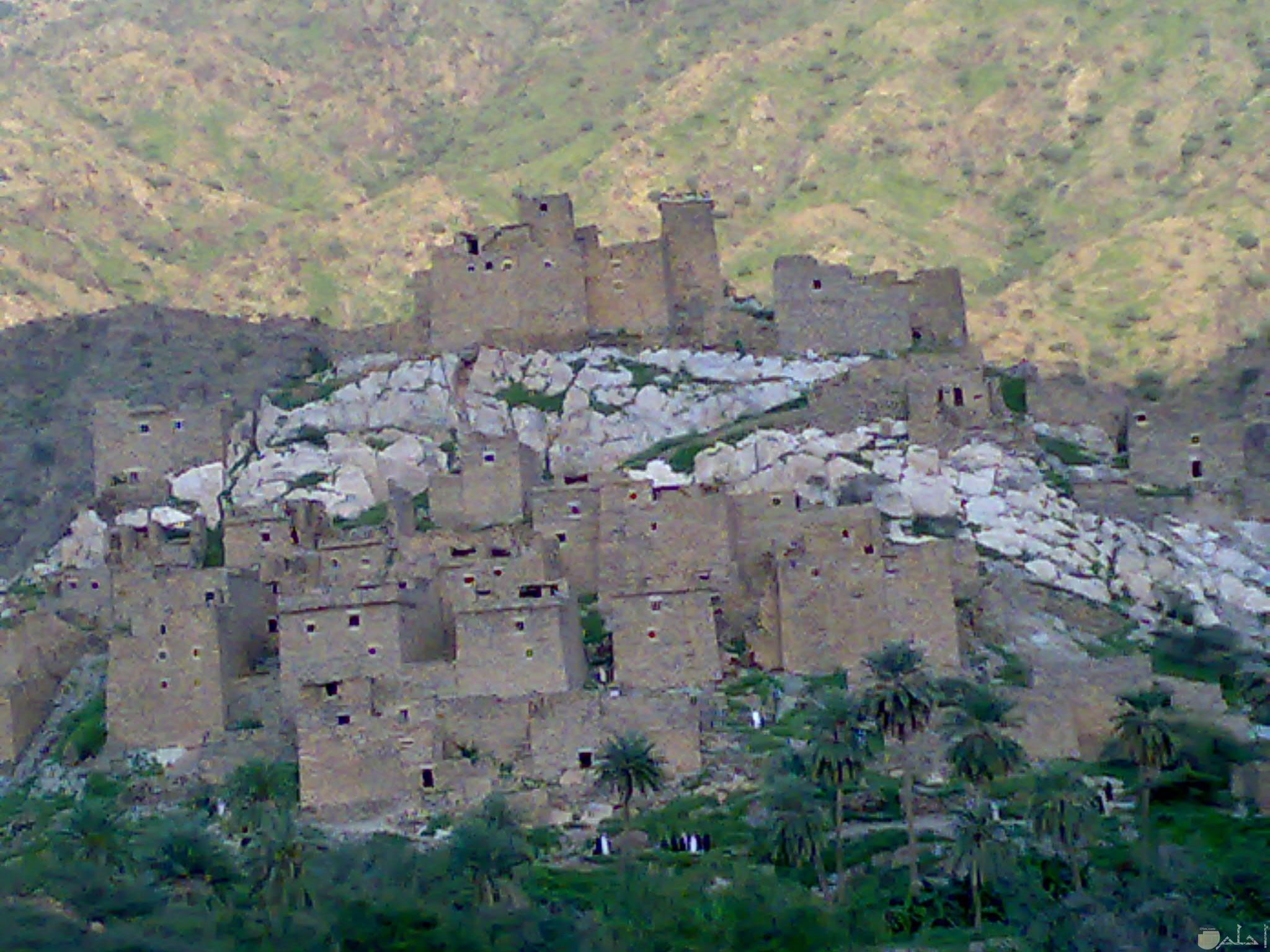 قرية ذي عين الأثرية – الباحة