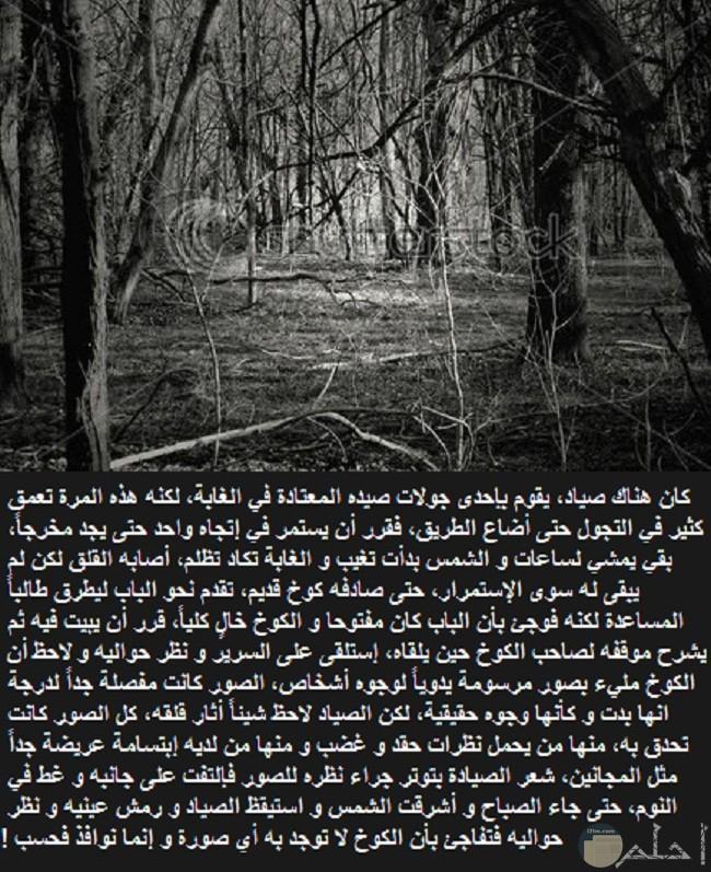 قصة الصياد و الصورة المرعبة.
