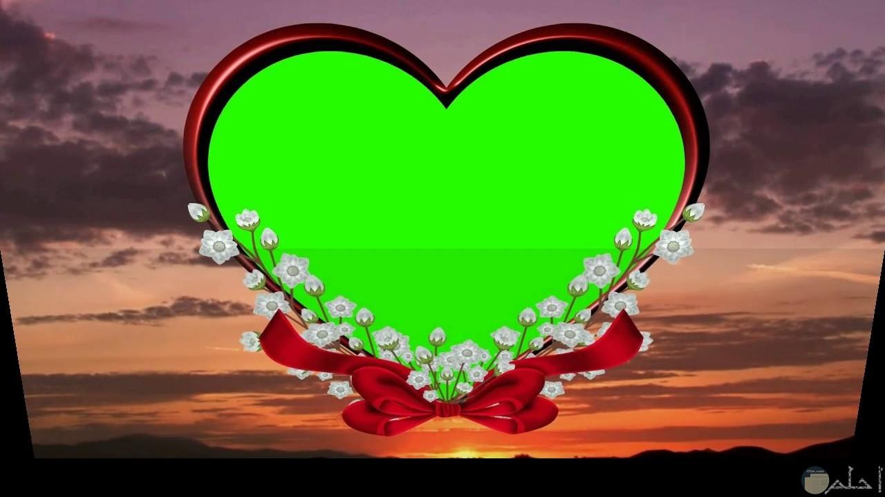 خلفية قلب اخضر للفيس