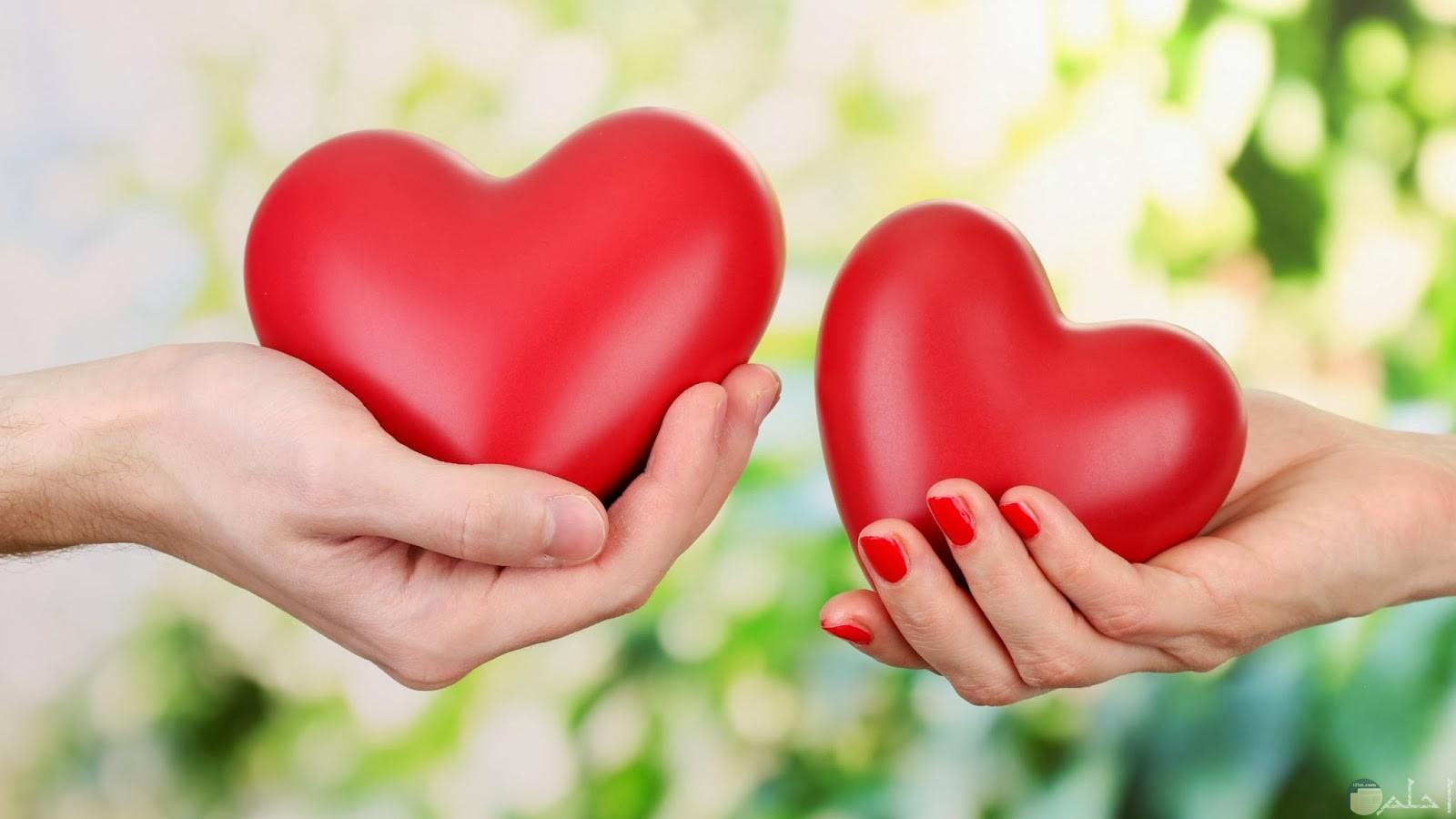 قلوب حمراء تمسكها يد فتاة و يد ولد.