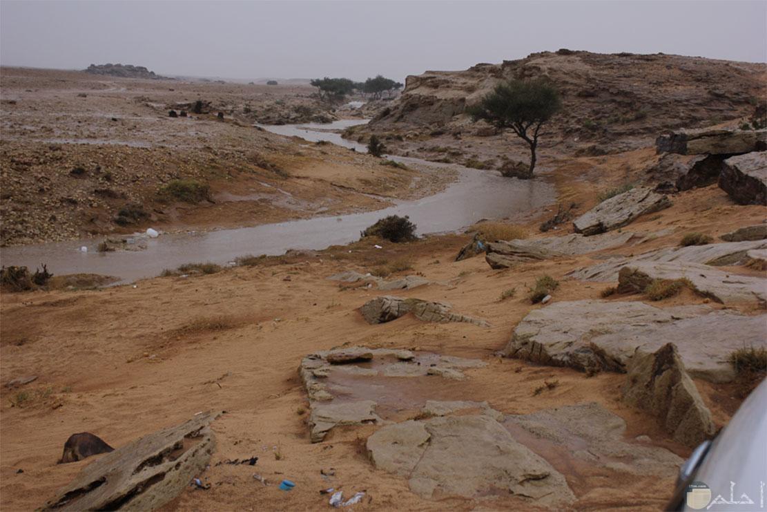 وادي الطوقي بالعاصمة الرياض