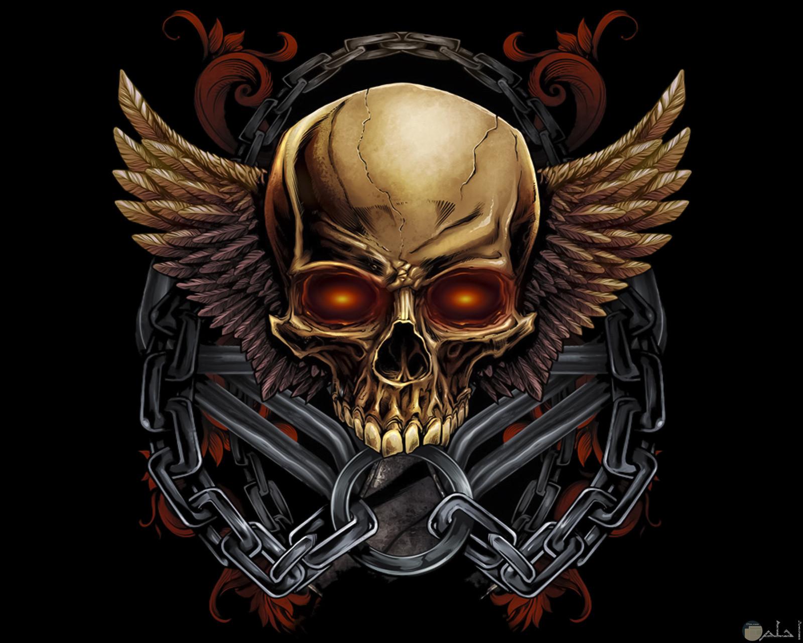 خلفية شعار الجماجم المجنحة.