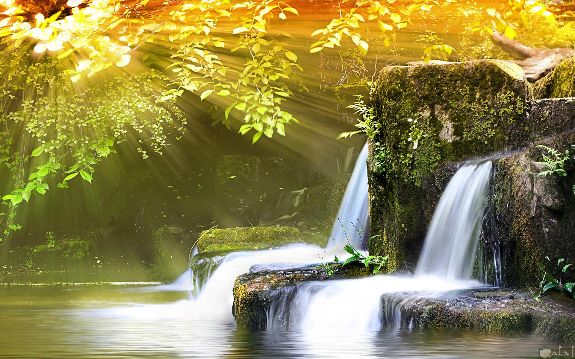 شلالات بين الصخور واشجار محاطة بها