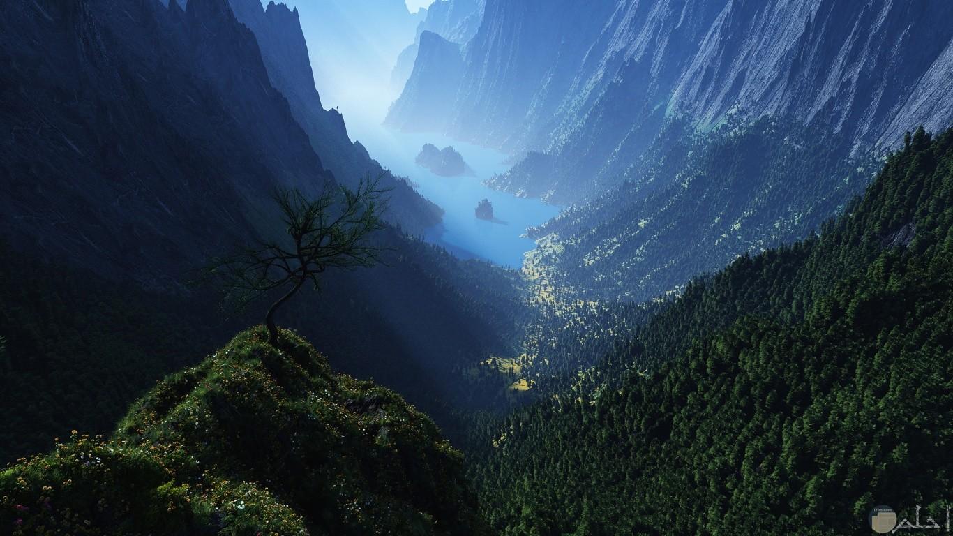جبال عالية ونباتات خضراء منظر غاية فى الجمال