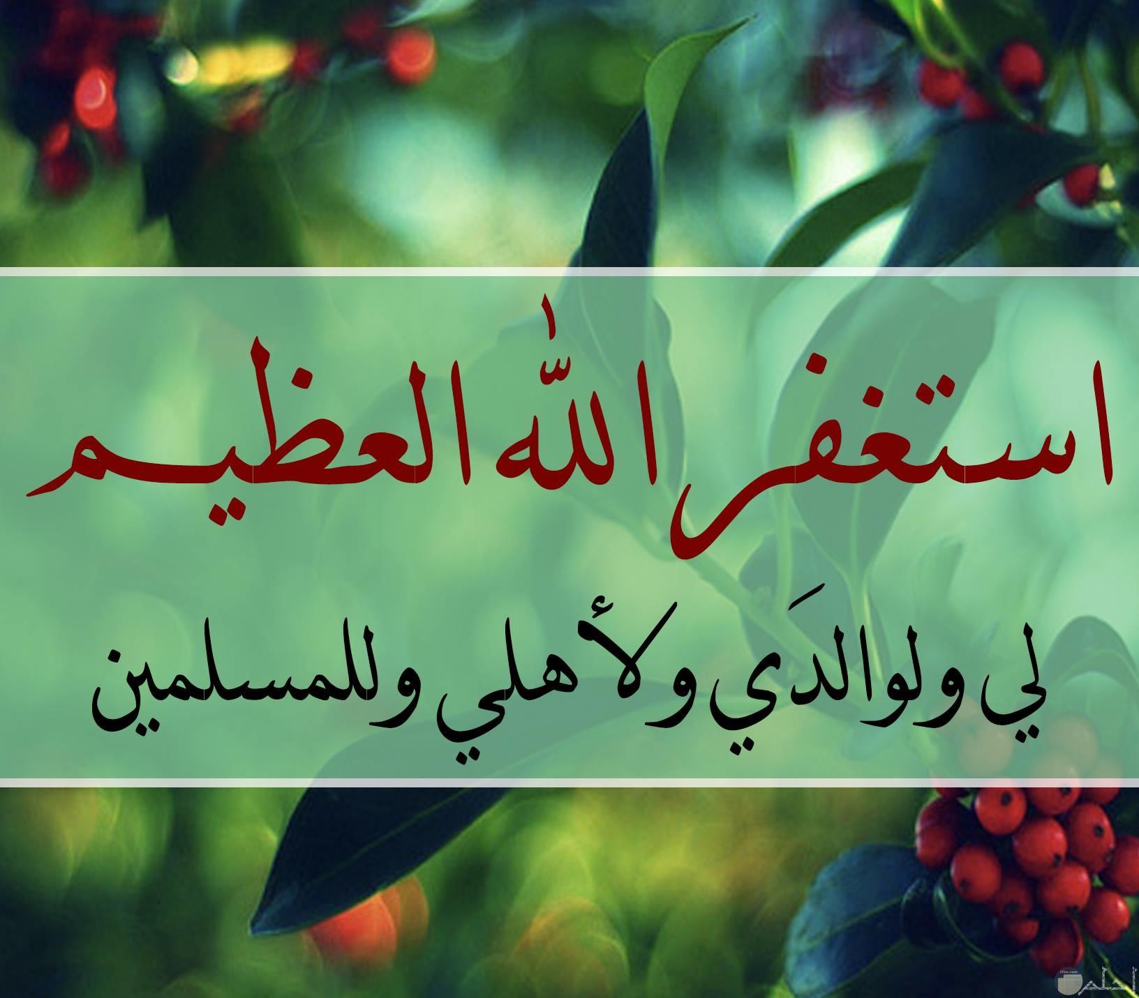 استغفر الله العظيم لي ولوالدي ولاهلي وللمسلمين