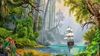 منظر لمركب شراعية تظهر في الماء من بين أشجار الغابات.