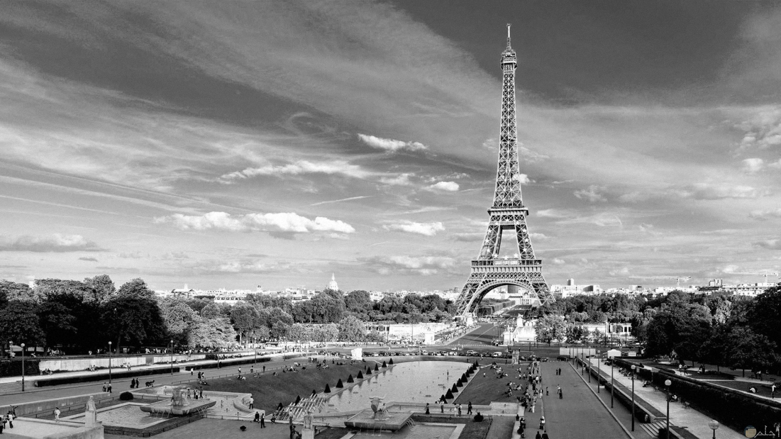 برج إيفيل بفرنسا أبيض و أسود.