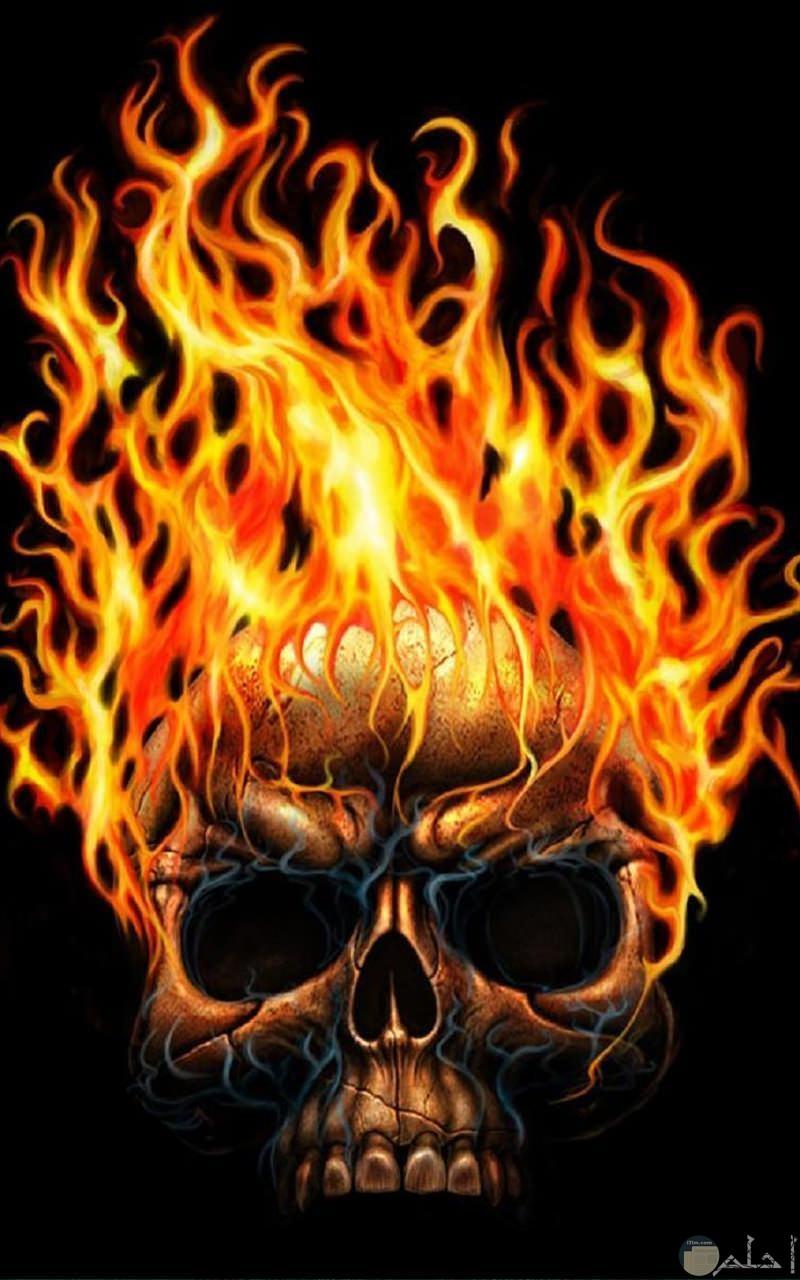 جمجمة النار المرعبة.