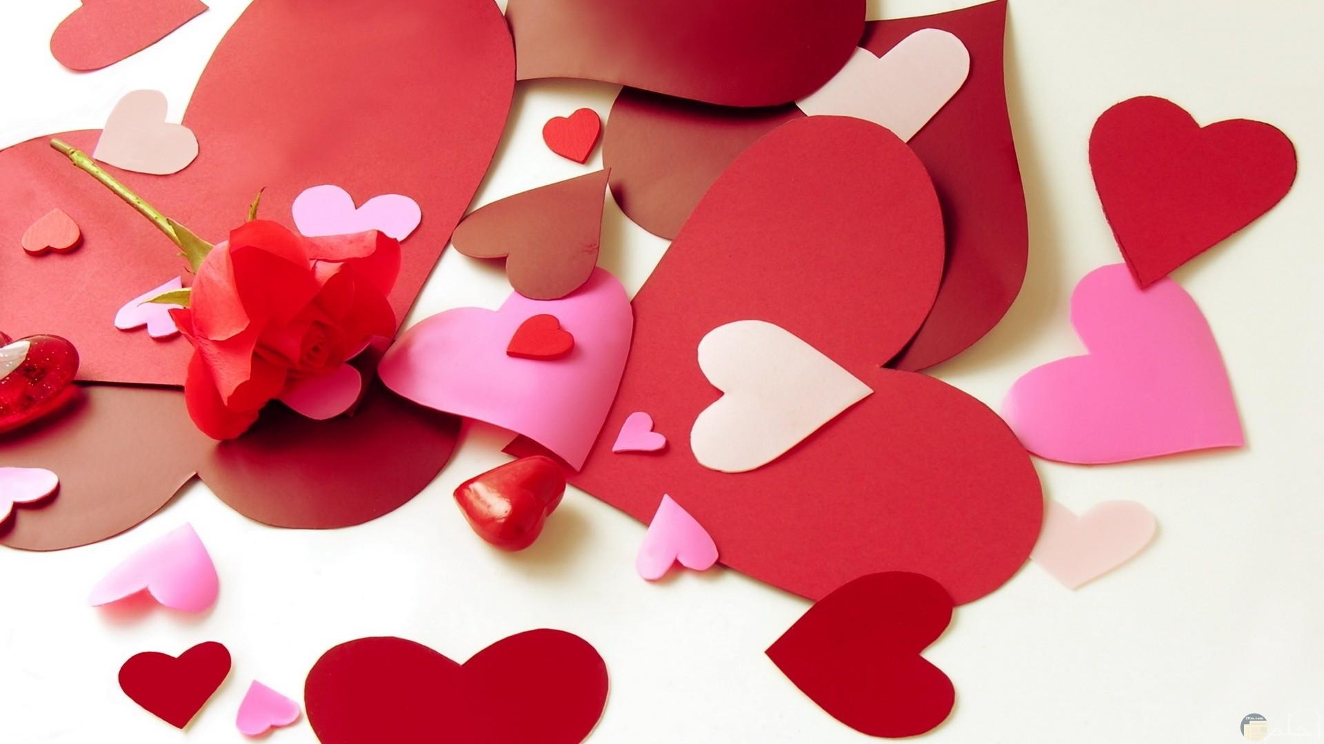 قلوب متعددة الألوان أحمر و بمبي و بينك و روز و بني.