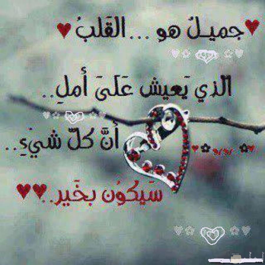 جميلا هو القلب الذي يعيش على أمل ....