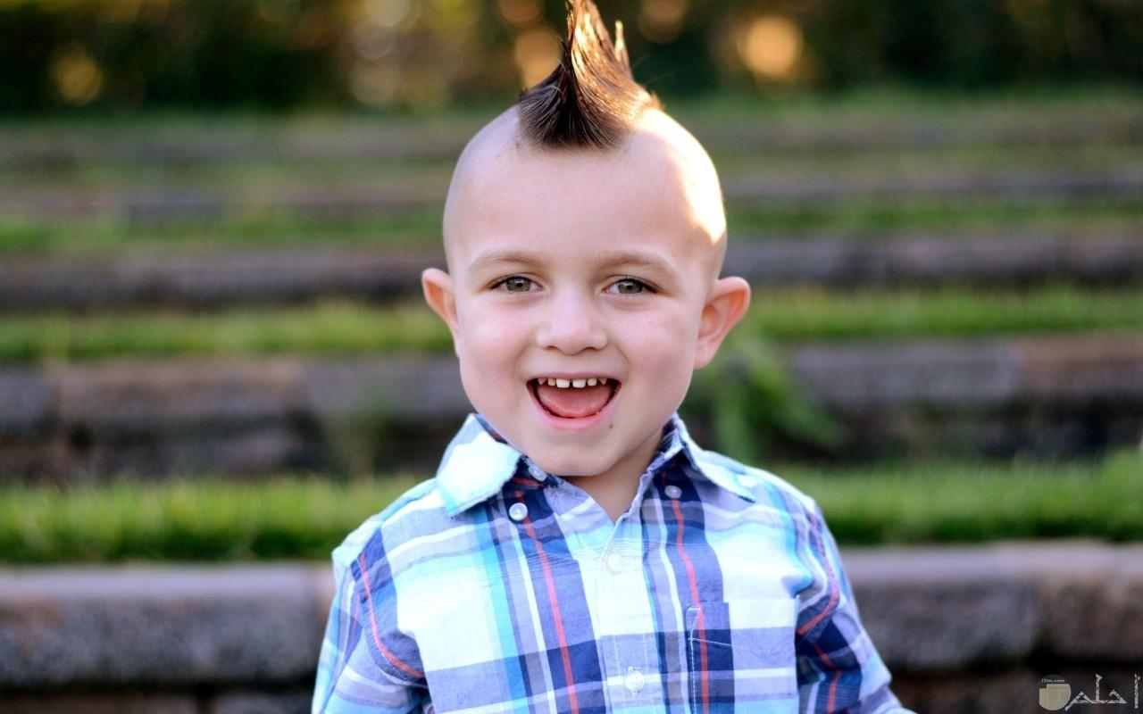 طفل روش و جنون قصات الشعر.