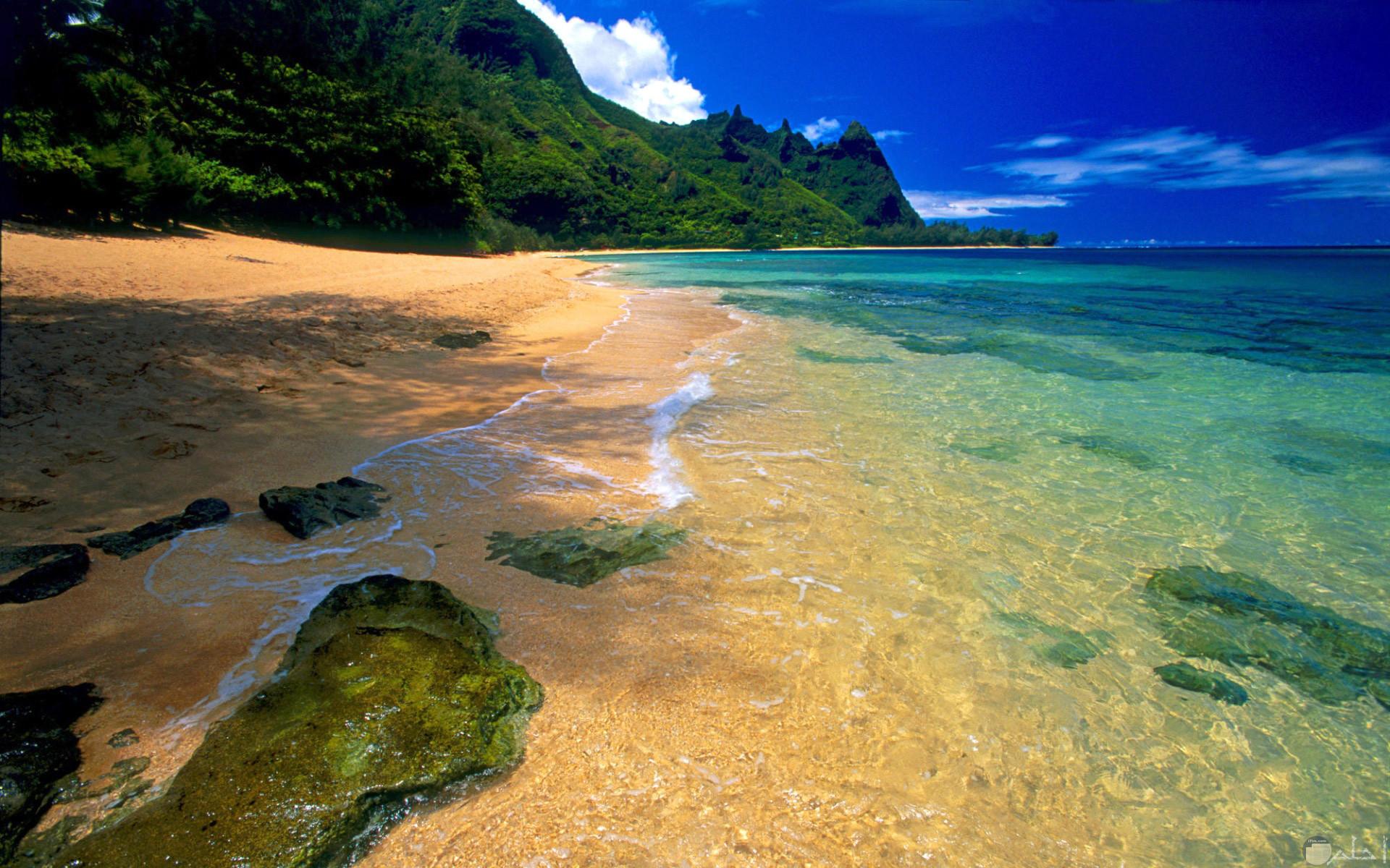 أجمل لقطة للبحر و الرمال و الصخور البحرية.
