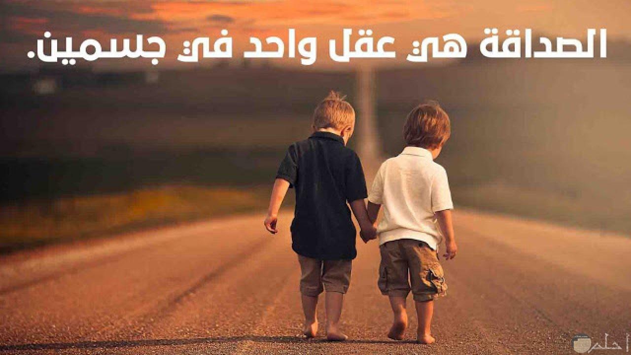 الصداقة هي عقل واحد في جسدين.