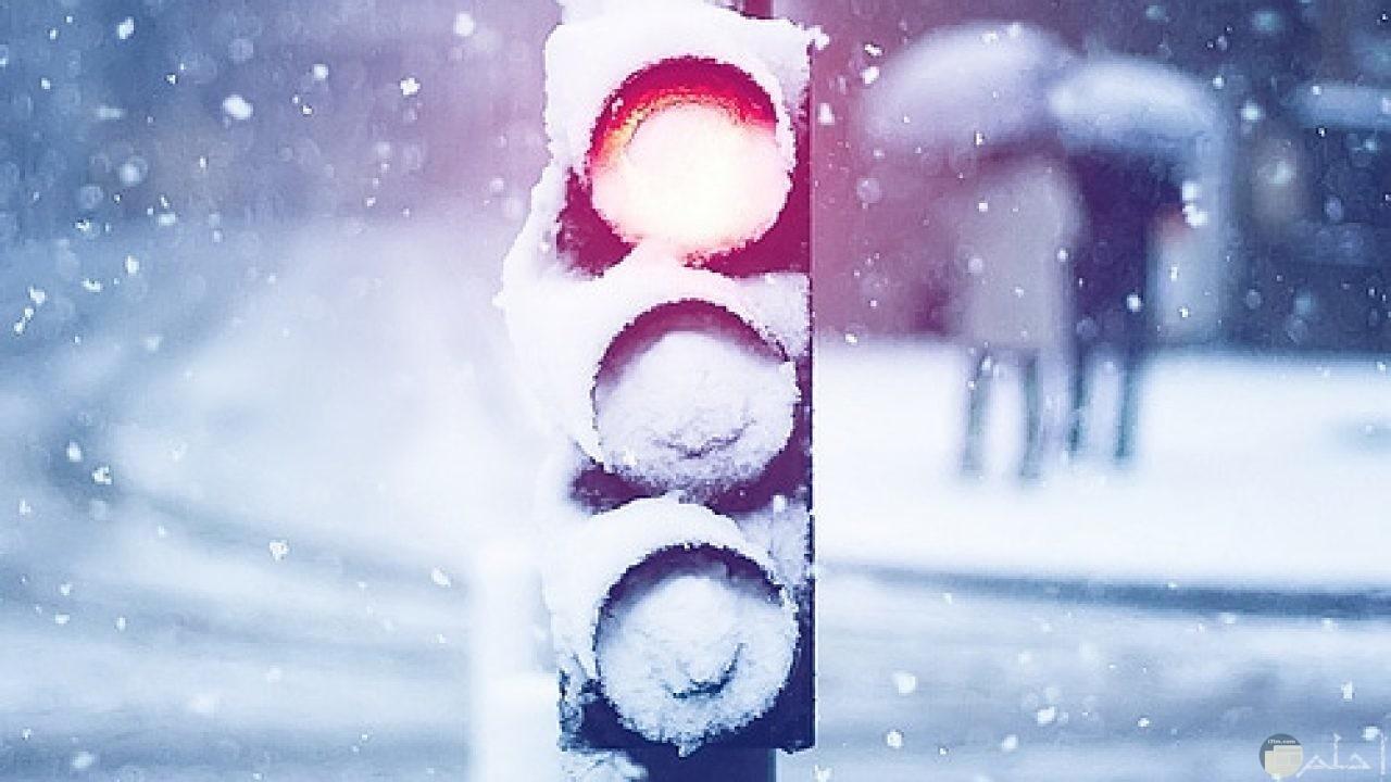 كل شئ يتجمد في البرد و الشتاء.
