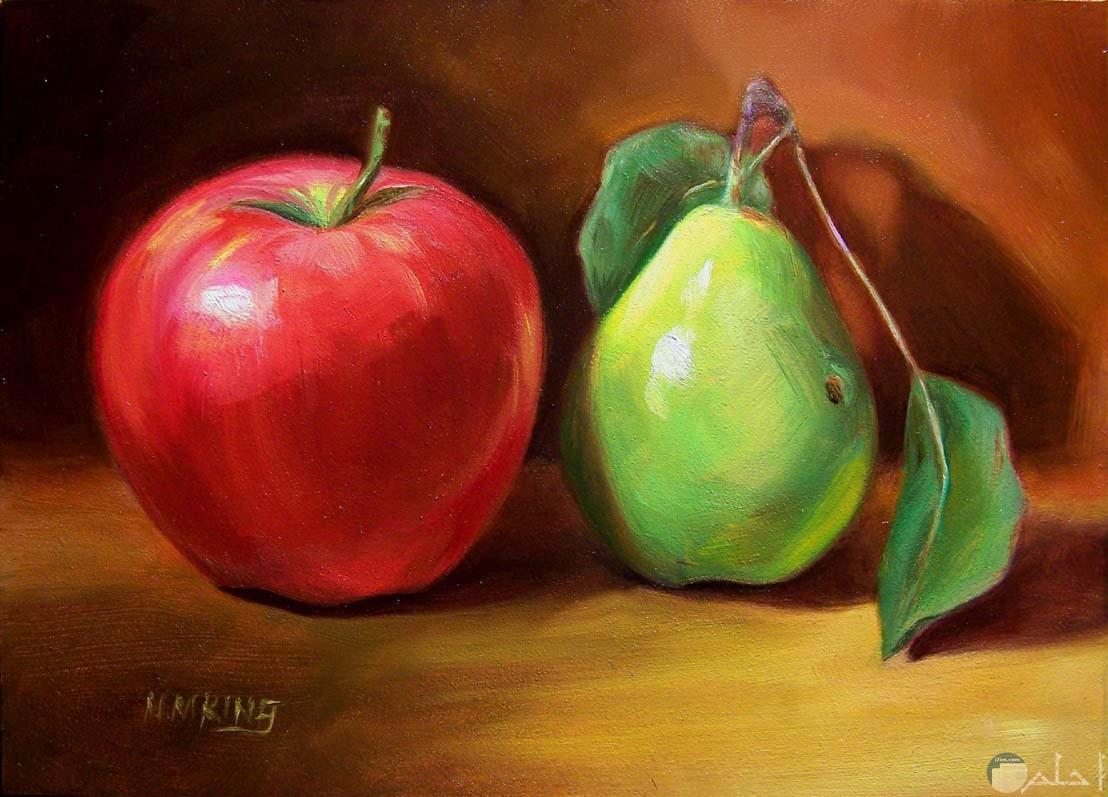رسمة تفاحة و كمثرى ملونة.