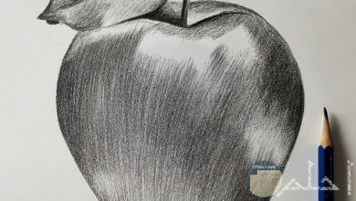 رسمة تفاحة مرسومة بالرصاص.