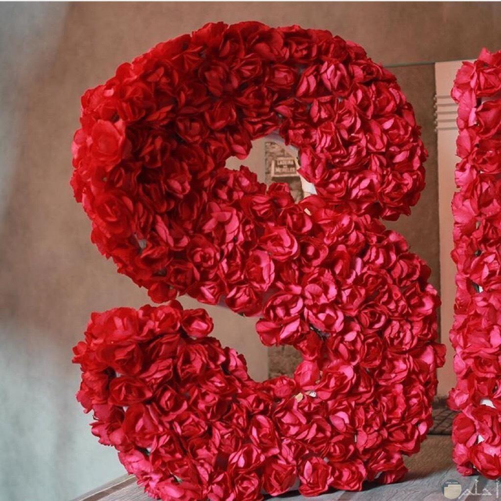 حرفs و أزهاره.